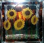 Декоративные стеклоблоки с композициями внутри