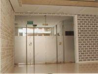 фото матовые двустворчатые стеклянные двери