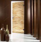 фото одностворчатые стеклянные двери с нанесённым рисунком