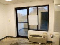фото распашные двери с притвором и переходом в окна
