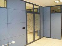фото алюминевые межкомнатные маятниковые двери с матовой вставкой