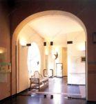 фото двойные цельностеклянные двери вставками изображений