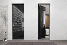 фото тонированные чёрные цельностеклянные двери