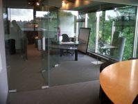 фото прозрачные высокие маятниковые двери