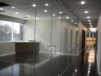 фото прозрачные двойные межкомнатные стеклянные двери