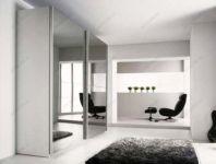 фото раздвижные двойные зеркальные двери