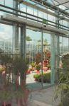фото автоматические раздвижные двери в цветочном выставочном центре