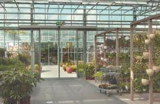 фото автоматические раздвижные стеклянные двери в зимнем саду