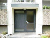 фото распашная входная дверь в жилой дом