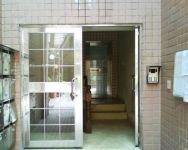 фото входная дверь в жилой дом из не ржавеющей стали