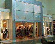 фото мятниковые входные двери для магазина одежды