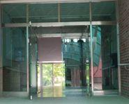 фото маятниковые стеклянные распашные двери двухпольные