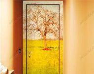 фото фотовитражи на двери