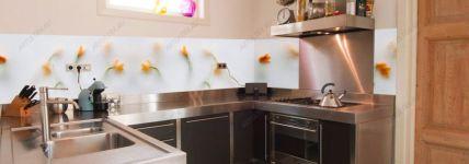 фото кухни с фотовитражом