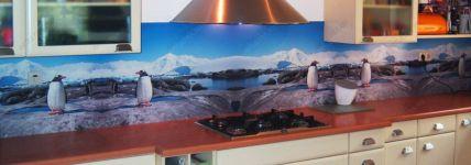 фото кухня с фотовитражами