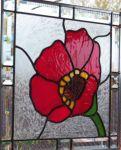 фото цветок Тиффани