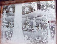фото пескоструй зимний лес