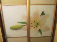 Шкафы купе - фотопечать с лилией