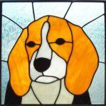фото собака на витраже