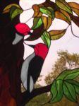 фото витраж колибри
