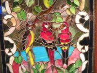 фото витраж попугайчики