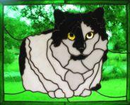фото витражные рисунки кошки
