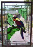 фото витражный попугай